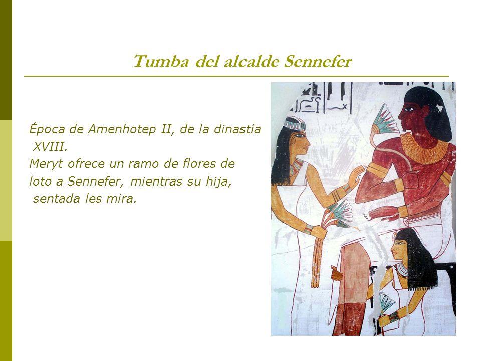 Tumba del alcalde Sennefer Época de Amenhotep II, de la dinastía XVIII. Meryt ofrece un ramo de flores de loto a Sennefer, mientras su hija, sentada l
