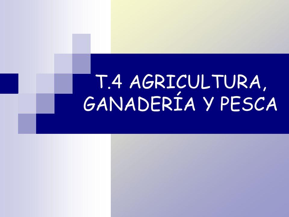 T.4 AGRICULTURA, GANADERÍA Y PESCA