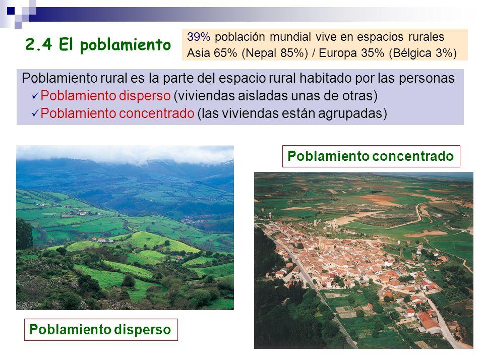 Poblamiento rural es la parte del espacio rural habitado por las personas Poblamiento disperso (viviendas aisladas unas de otras) Poblamiento concentr