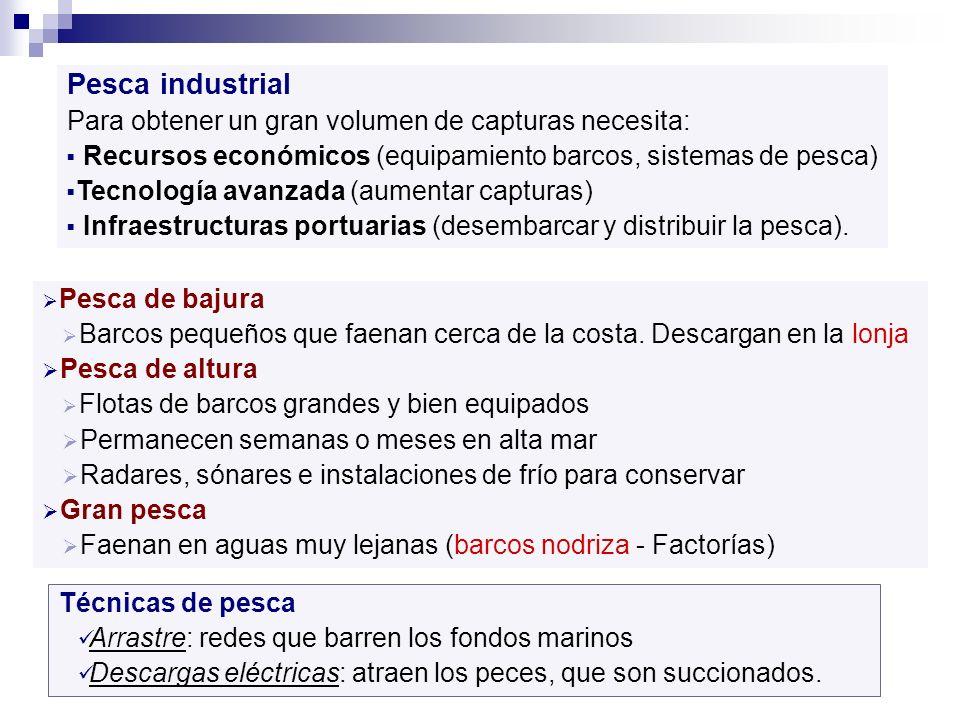 Pesca industrial Para obtener un gran volumen de capturas necesita: Recursos económicos (equipamiento barcos, sistemas de pesca) Tecnología avanzada (