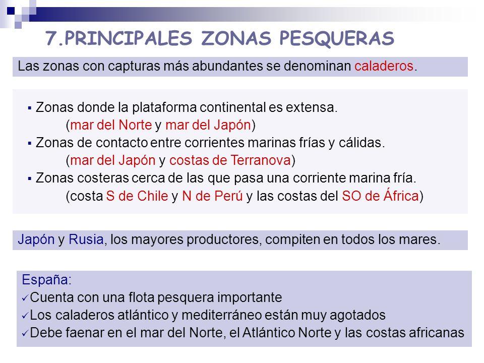 7.PRINCIPALES ZONAS PESQUERAS Las zonas con capturas más abundantes se denominan caladeros. Zonas donde la plataforma continental es extensa. (mar del