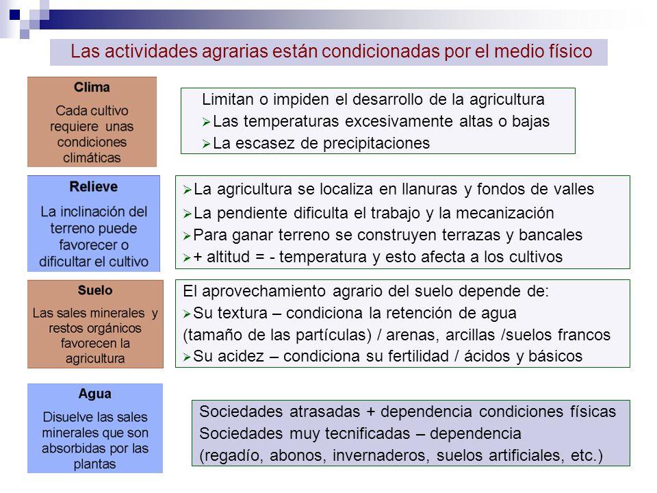 2.LOS PAISAJES AGRARIOS La parcela es la división del suelo agrario.