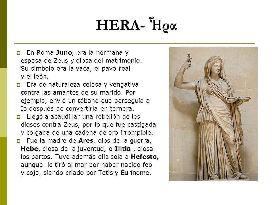 HERA- ρα En Roma Juno, era la hermana y esposa de Zeus y diosa del matrimonio. Su símbolo era la vaca, el pavo real y el león. Era de naturaleza celos