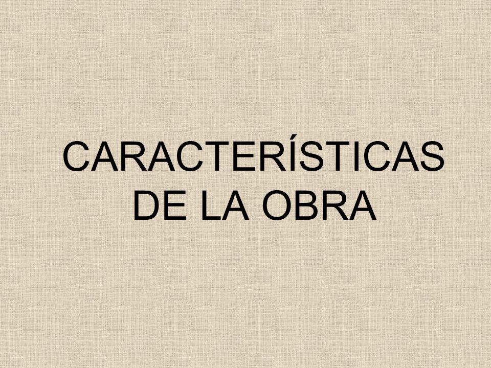 CARACTERÍSTICAS DE LA OBRA