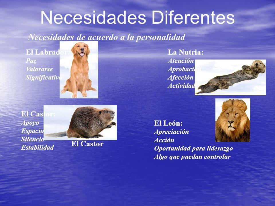 Necesidades Diferentes El León: Apreciación Acción Oportunidad para liderazgo Algo que puedan controlar Necesidades de acuerdo a la personalidad El Ca