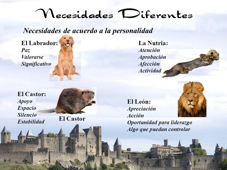 16 Necesidades Diferentes El León: Apreciación Acción Oportunidad para liderazgo Algo que puedan controlar Necesidades de acuerdo a la personalidad El