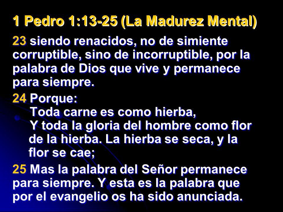 23 siendo renacidos, no de simiente corruptible, sino de incorruptible, por la palabra de Dios que vive y permanece para siempre. 24 Porque: Toda carn