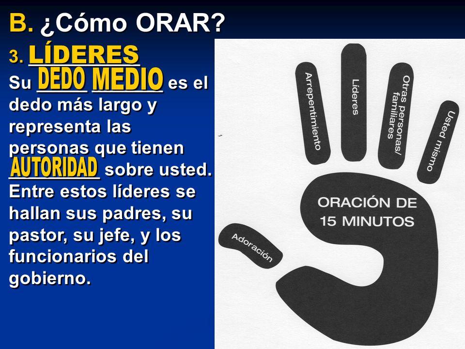 3. ___________ Su _____ _______ es el dedo más largo y representa las personas que tienen _________ sobre usted. Entre estos líderes se hallan sus pad