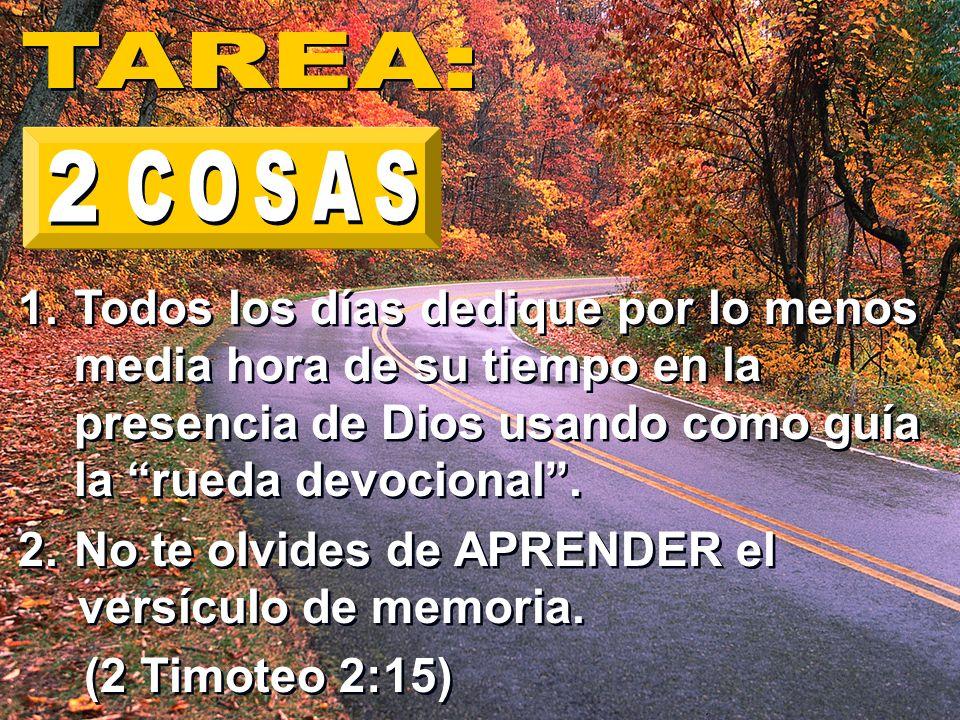 1.Todos los días dedique por lo menos media hora de su tiempo en la presencia de Dios usando como guía la rueda devocional. 2.No te olvides de APRENDE