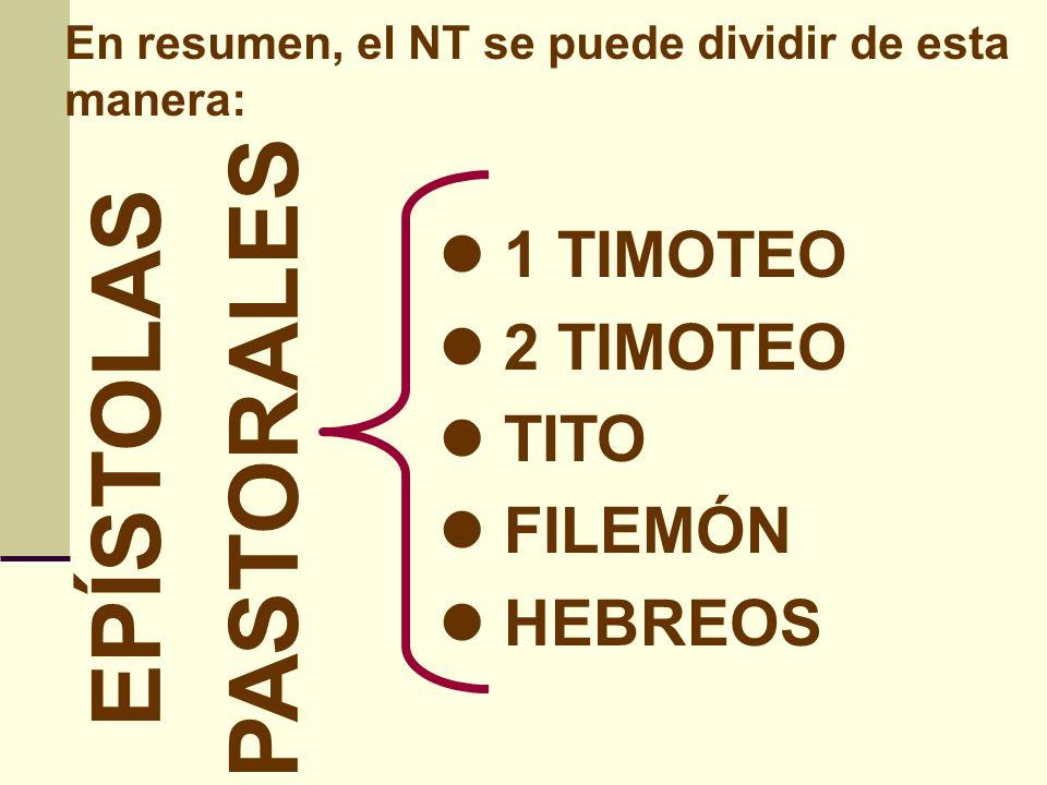 En resumen, el NT se puede dividir de esta manera: SANTIAGO 1 PEDRO 2 PEDRO 1 JUAN 2 JUAN 3 JUAN JUDAS EPÍSTOLAS UNIVERSALES