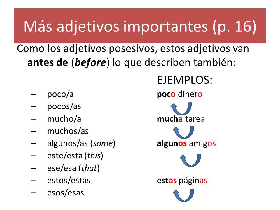 Más adjetivos importantes (p.