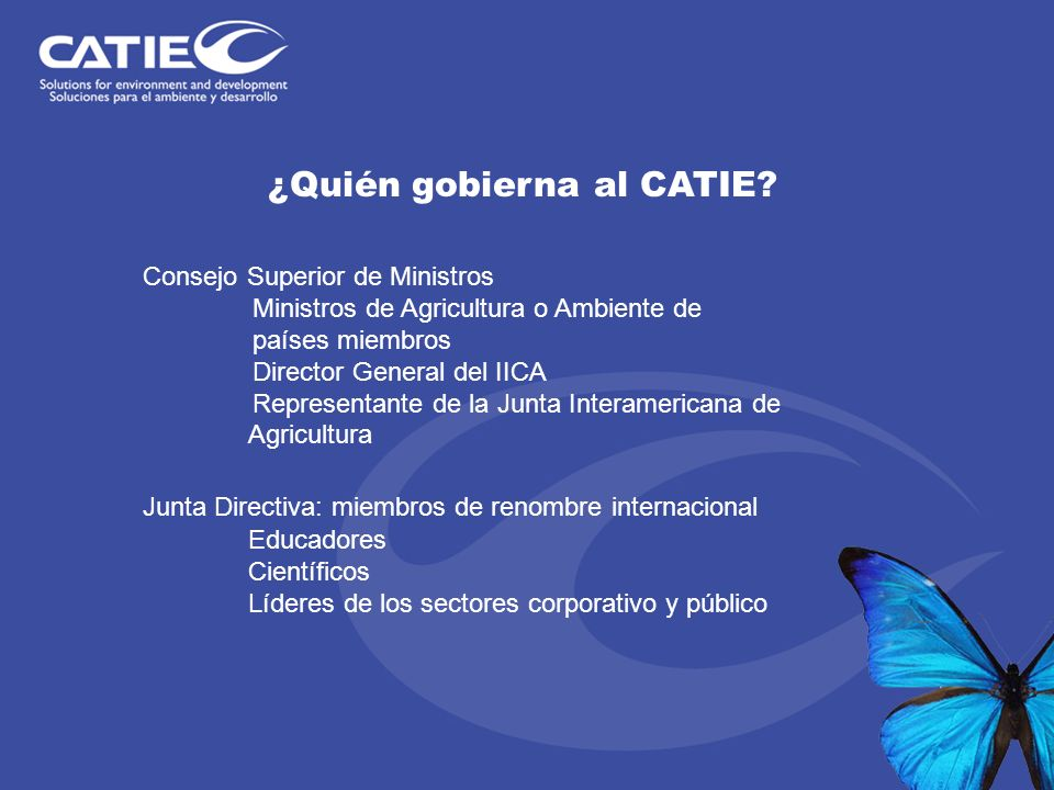¿Quién gobierna al CATIE? Consejo Superior de Ministros Ministros de Agricultura o Ambiente de países miembros Director General del IICA Representante