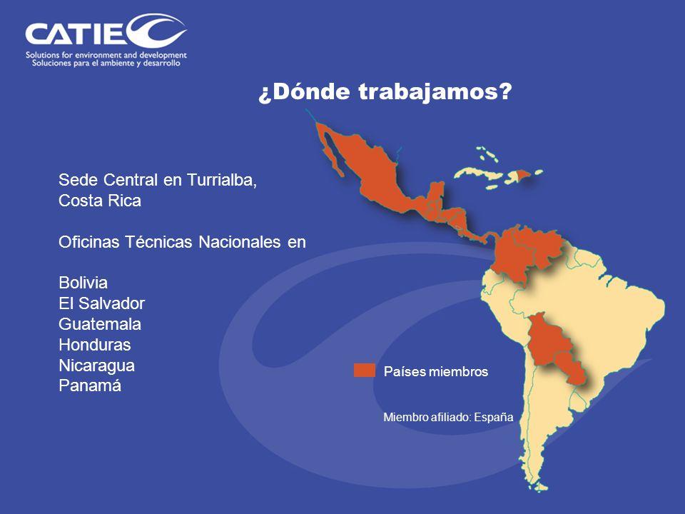 ¿Dónde trabajamos? Sede Central en Turrialba, Costa Rica Oficinas Técnicas Nacionales en Bolivia El Salvador Guatemala Honduras Nicaragua Panamá Paíse