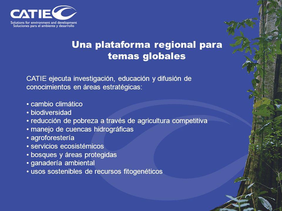 CATIE ejecuta investigación, educación y difusión de conocimientos en áreas estratégicas: cambio climático biodiversidad reducción de pobreza a través