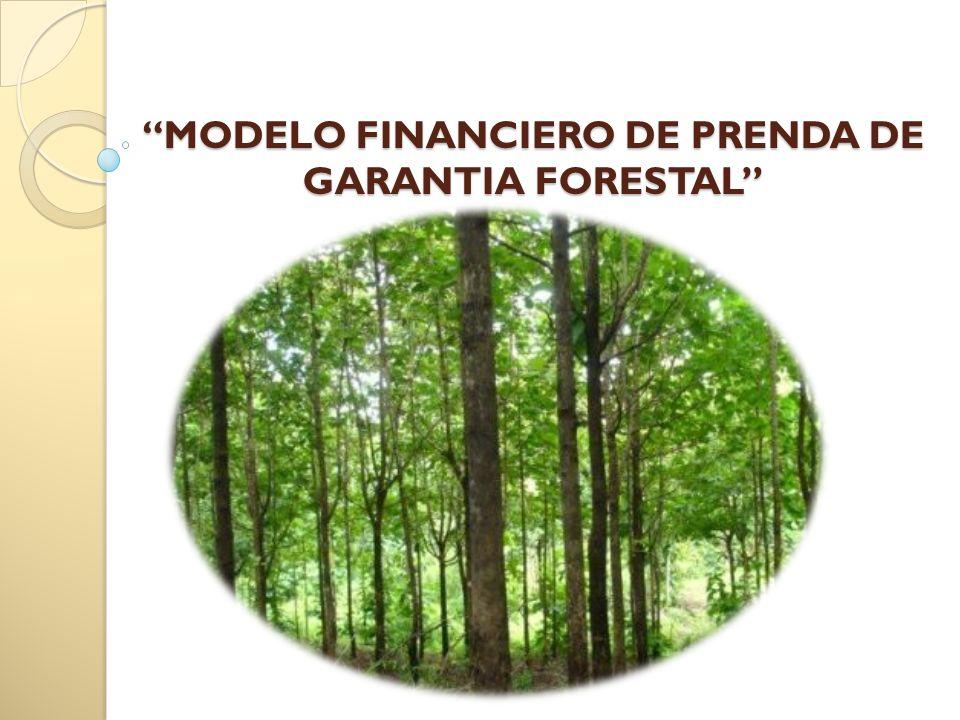 MODELO FINANCIERO DE PRENDA DE GARANTIA FORESTALMODELO FINANCIERO DE PRENDA DE GARANTIA FORESTAL