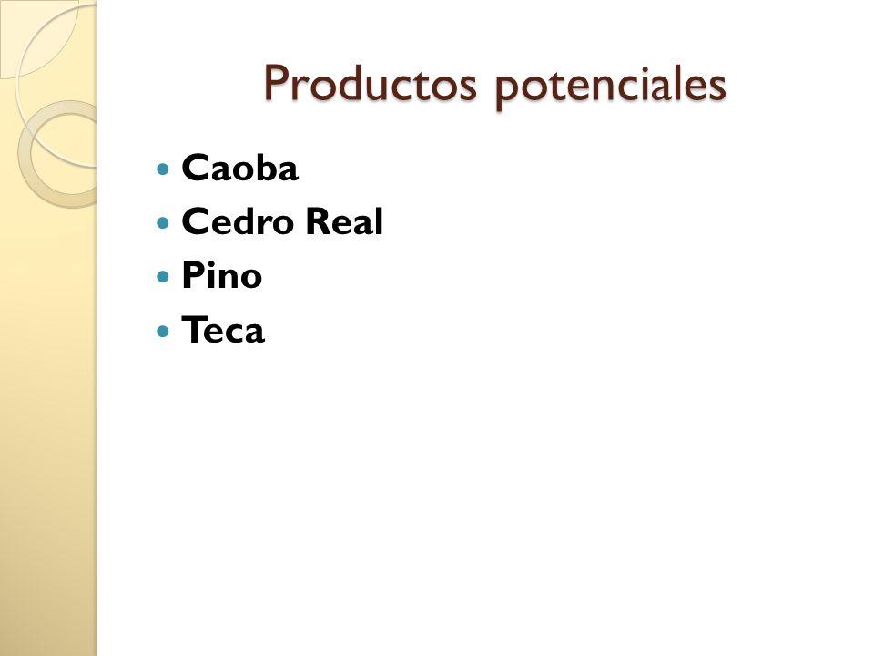 Productos potenciales Caoba Cedro Real Pino Teca