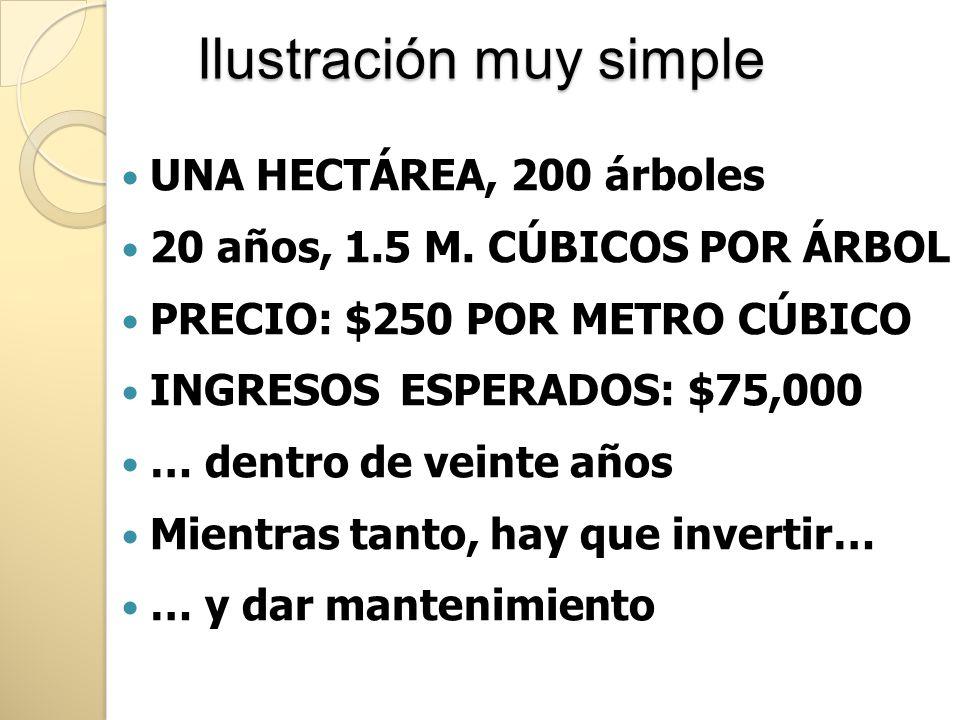 Ilustración muy simple UNA HECTÁREA, 200 árboles 20 años, 1.5 M. CÚBICOS POR ÁRBOL PRECIO: $250 POR METRO CÚBICO INGRESOS ESPERADOS: $75,000 … dentro