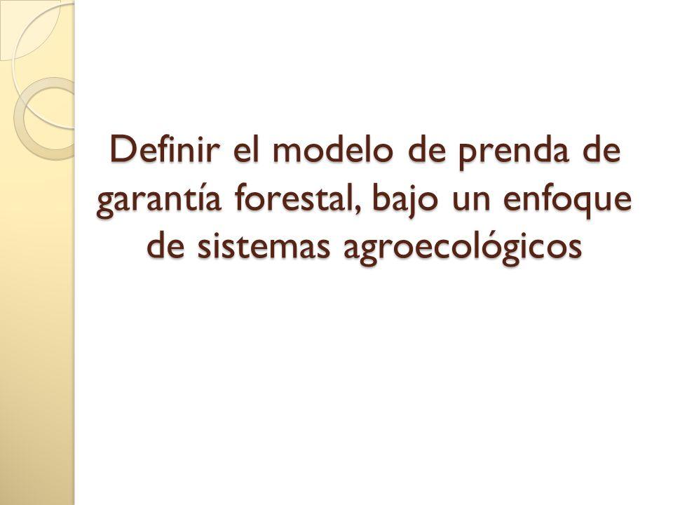 Definir el modelo de prenda de garantía forestal, bajo un enfoque de sistemas agroecológicos Definir el modelo de prenda de garantía forestal, bajo un