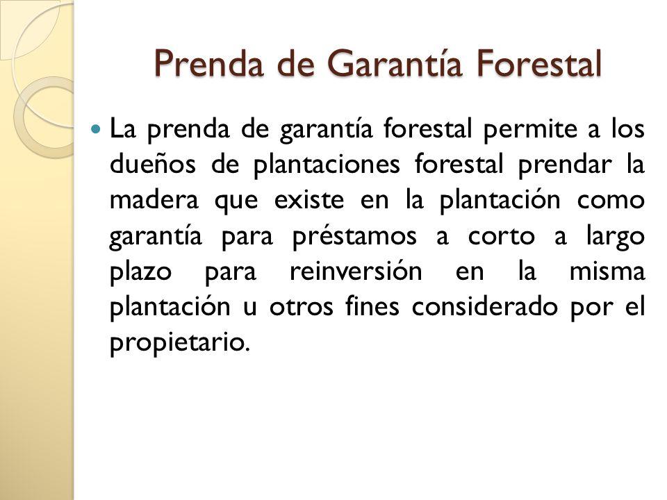 Prenda de Garantía Forestal Se define como; La opción de prendar el vuelo forestal, o la cosecha anticipada por el valor de la madera esperada.