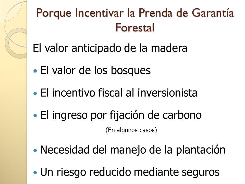 Componentes del negocio forestal REFORESTACIÓNCOMERCIAL ProducciónagroforestalFijacióndecarbono Prenda de Garantía forestal Incentivos fiscales