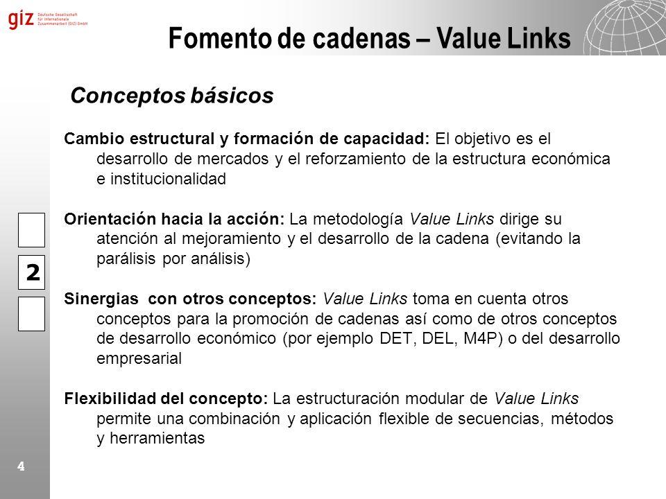 4 Cambio estructural y formación de capacidad: El objetivo es el desarrollo de mercados y el reforzamiento de la estructura económica e institucionali