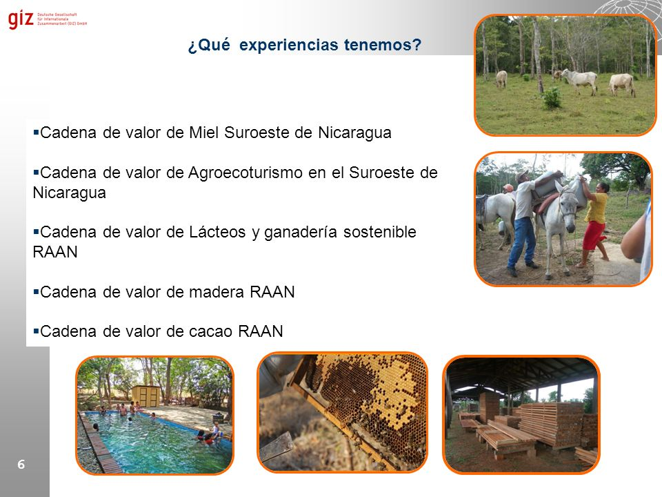 6 ¿Qué experiencias tenemos? Cadena de valor de Miel Suroeste de Nicaragua Cadena de valor de Agroecoturismo en el Suroeste de Nicaragua Cadena de val
