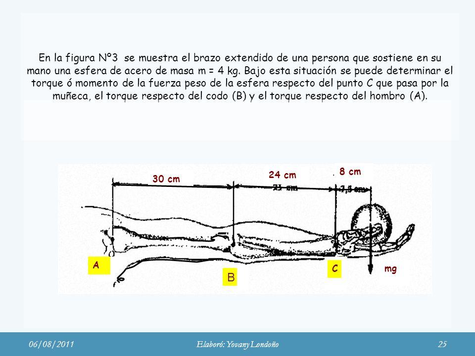 En la figura Nº3 se muestra el brazo extendido de una persona que sostiene en su mano una esfera de acero de masa m = 4 kg. Bajo esta situación se pue