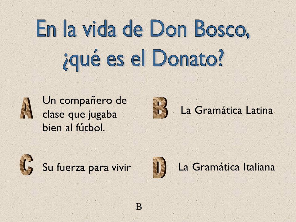 La Gramática Latina Un compañero de clase que jugaba bien al fútbol. Su fuerza para vivir B La Gramática Italiana