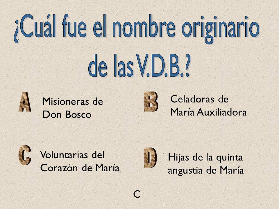 Celadoras de María Auxiliadora Voluntarias del Corazón de María Hijas de la quinta angustia de María Misioneras de Don Bosco C