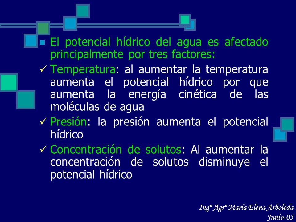 El potencial hídrico del agua es afectado principalmente por tres factores: Temperatura: al aumentar la temperatura aumenta el potencial hídrico por q