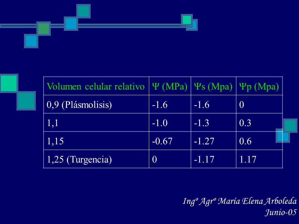 Volumen celular relativoΨ (MPa)Ψs (Mpa)Ψp (Mpa) 0,9 (Plásmolisis)-1.6 0 1,1-1.30.3 1,15-0.67-1.270.6 1,25 (Turgencia)0-1.171.17 Ingº Agrº María Elena