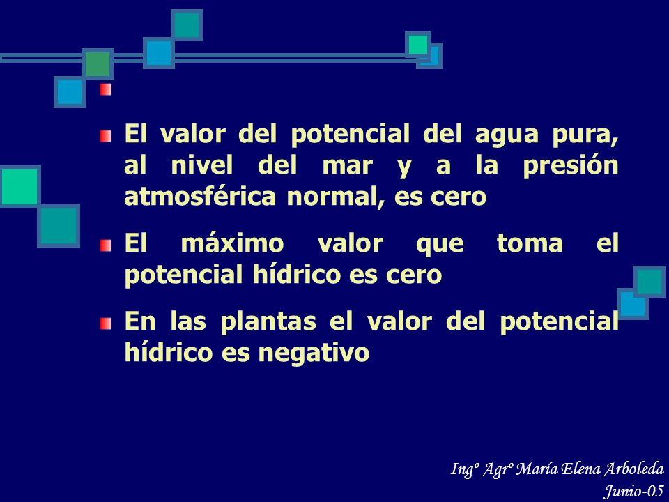 Unidades en que se expresa el potencial hídrico Fisiológicamente, el potencial hídrico se mide en unidades de presión La unidad estándar para el Ψ es el MegaPascal 1 atmósfera = 1,013 bar = 0,1013 Mpa = 1,013 Pa Ingº Agrº María Elena Arboleda Junio-05