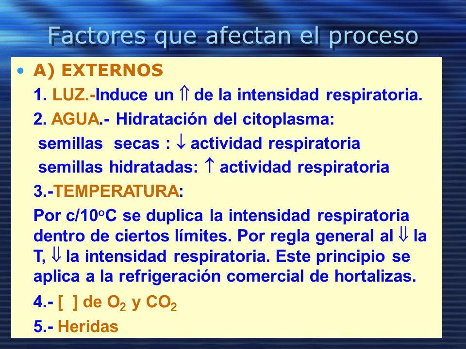 Factores que afectan el proceso Externos A) EXTERNOS 1. LUZ.-Induce un de la intensidad respiratoria. 2. AGUA.- Hidratación del citoplasma: semillas s