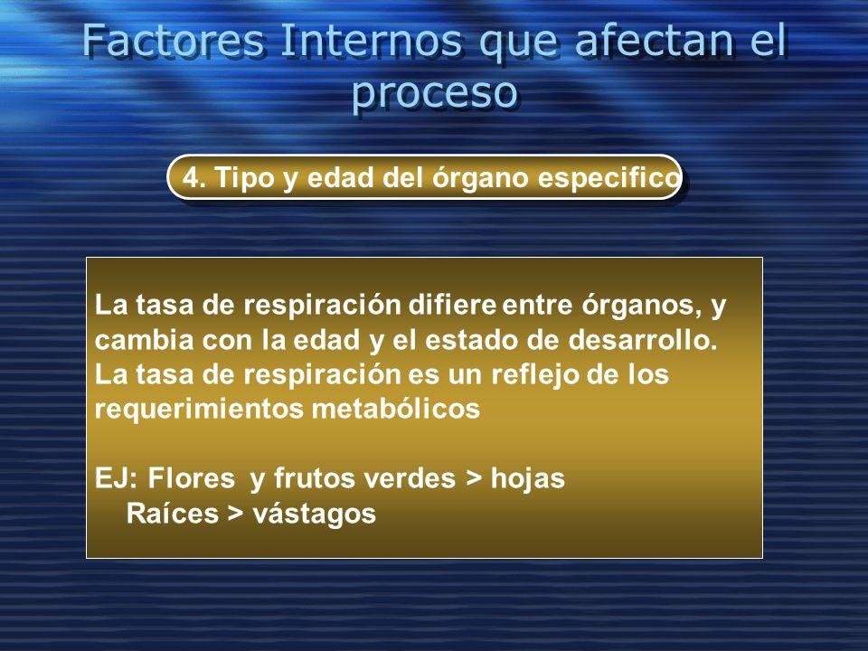 Factores Internos que afectan el proceso 4. Tipo y edad del órgano especifico La tasa de respiración difiere entre órganos, y cambia con la edad y el