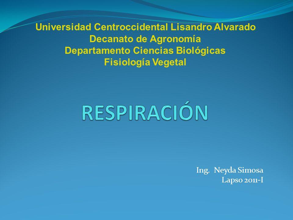 Ing. Neyda Simosa Lapso 2011-I Universidad Centroccidental Lisandro Alvarado Decanato de Agronomía Departamento Ciencias Biológicas Fisiología Vegetal