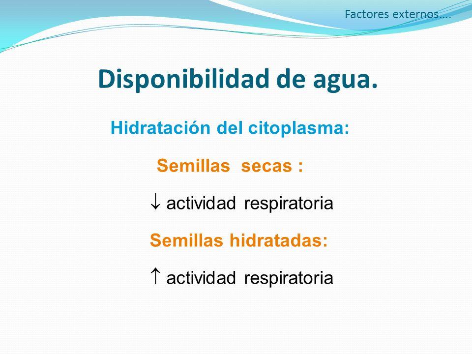 Disponibilidad de agua. Hidratación del citoplasma: Semillas secas : actividad respiratoria Semillas hidratadas: actividad respiratoria Factores exter