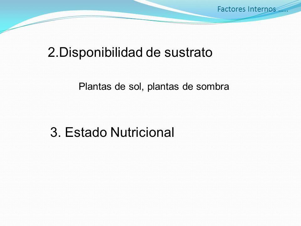 Factores Internos ….. 2.Disponibilidad de sustrato 3. Estado Nutricional Plantas de sol, plantas de sombra