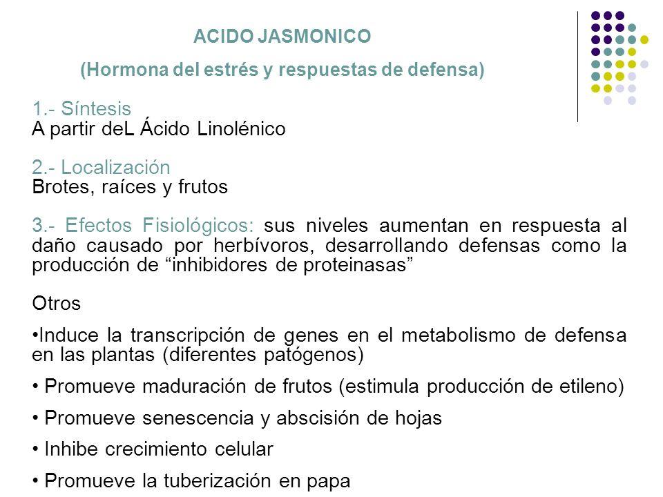 ACIDO JASMONICO (Hormona del estrés y respuestas de defensa) 1.- Síntesis A partir deL Ácido Linolénico 2.- Localización Brotes, raíces y frutos 3.- E
