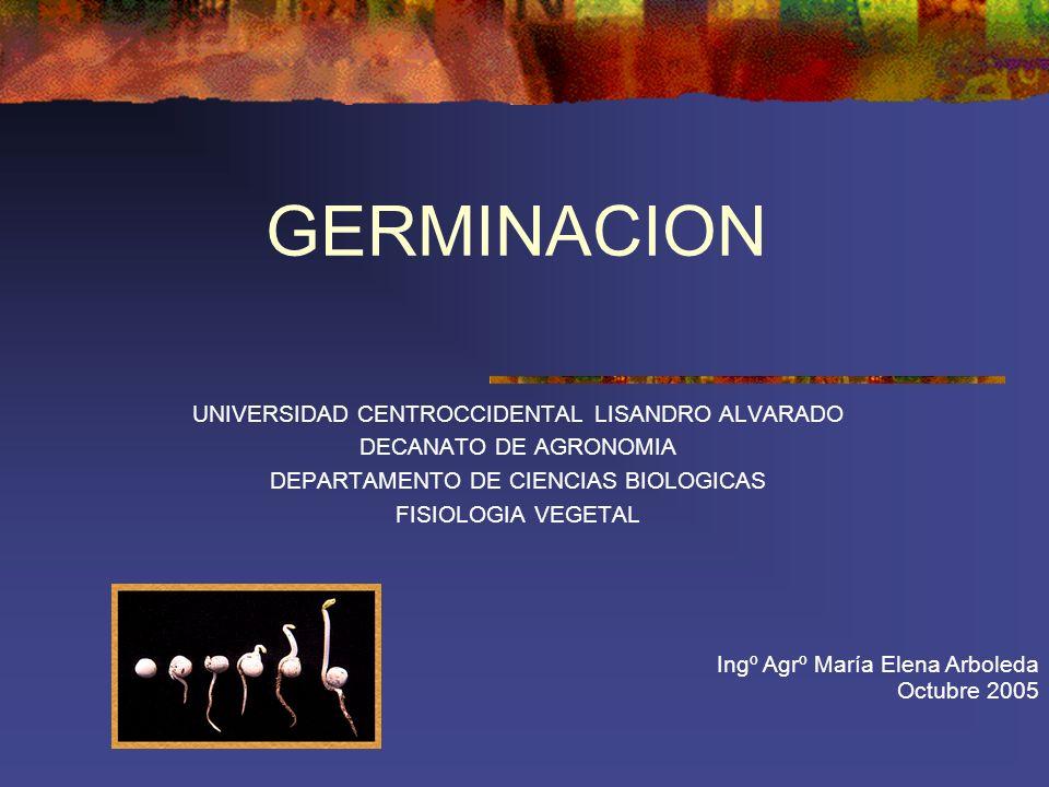 GERMINACION UNIVERSIDAD CENTROCCIDENTAL LISANDRO ALVARADO DECANATO DE AGRONOMIA DEPARTAMENTO DE CIENCIAS BIOLOGICAS FISIOLOGIA VEGETAL Ingº Agrº María
