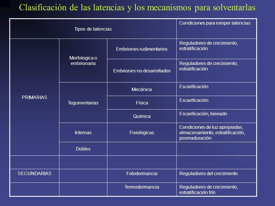 Tipos de latencias Condiciones para romper latencias PRIMARIAS Morfologica o embrionaria Embriones rudimentarios Reguladores de crecimiento, estratifi