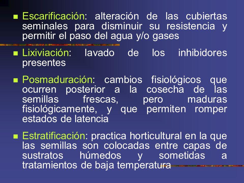 Escarificación: alteración de las cubiertas seminales para disminuir su resistencia y permitir el paso del agua y/o gases Lixiviación: lavado de los i
