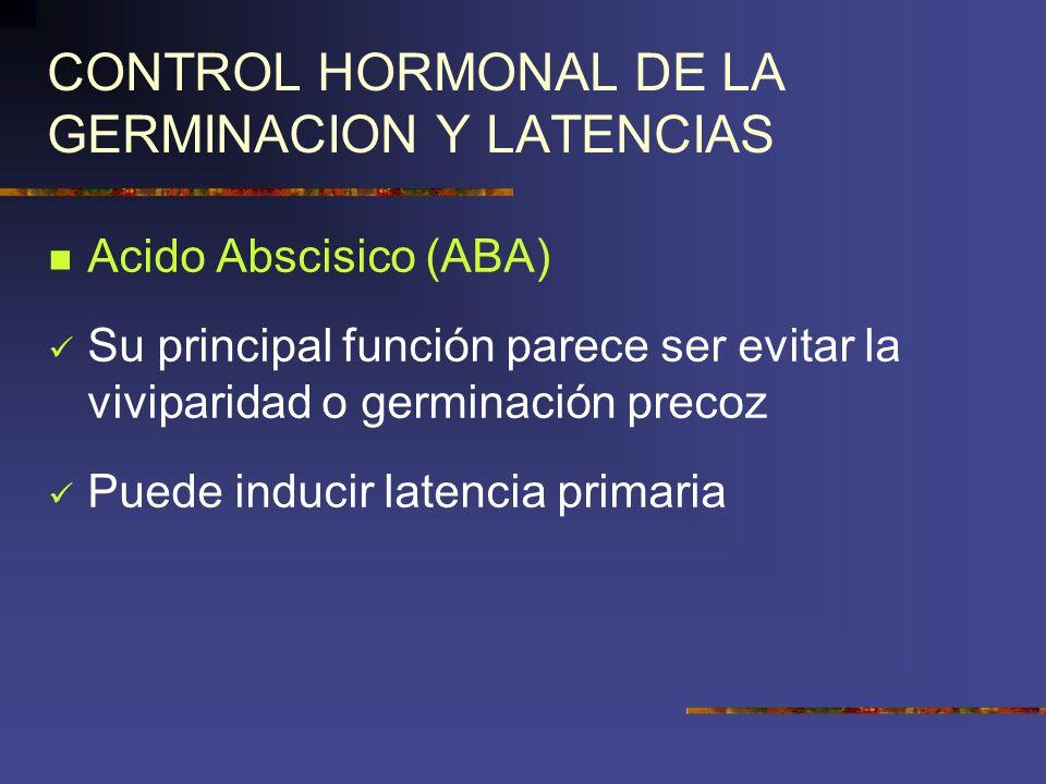 CONTROL HORMONAL DE LA GERMINACION Y LATENCIAS Acido Abscisico (ABA) Su principal función parece ser evitar la viviparidad o germinación precoz Puede