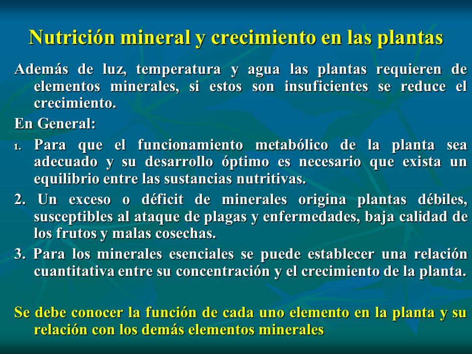 Nutrición mineral y crecimiento en las plantas Además de luz, temperatura y agua las plantas requieren de elementos minerales, si estos son insuficien