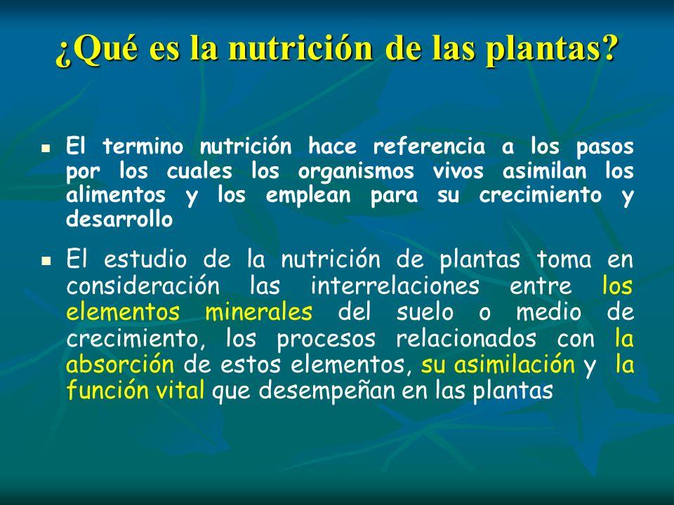 ¿Qué es la nutrición de las plantas? El termino nutrición hace referencia a los pasos por los cuales los organismos vivos asimilan los alimentos y los