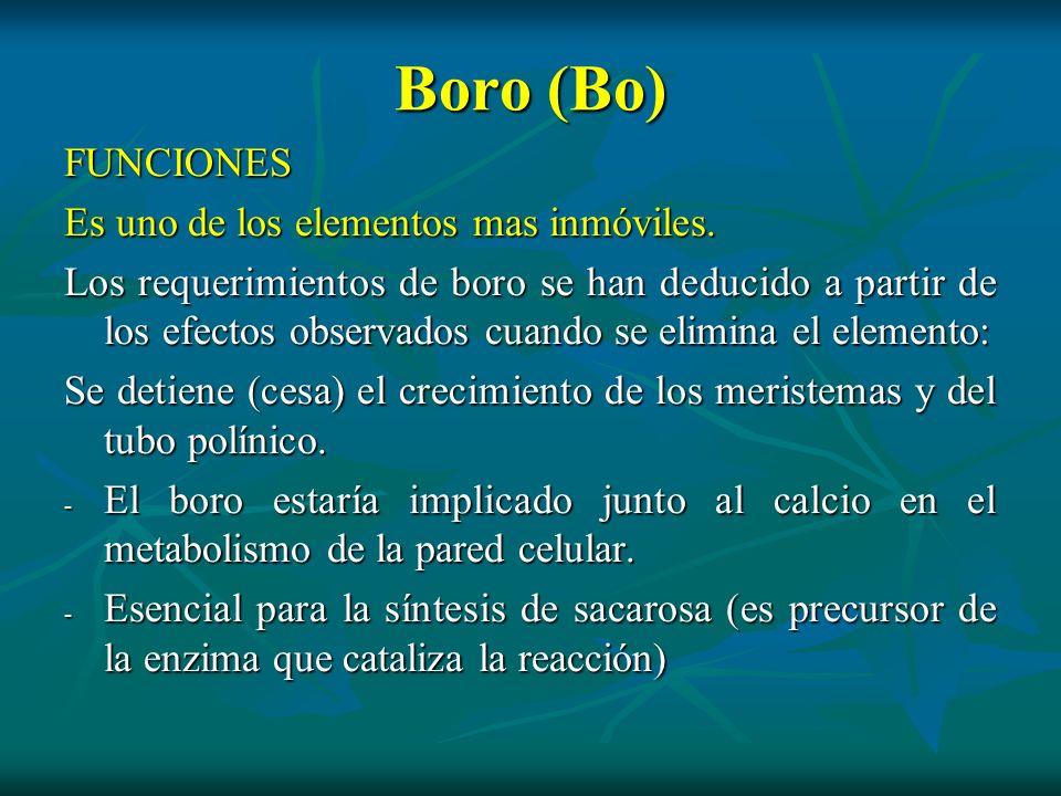 Boro (Bo) FUNCIONES Es uno de los elementos mas inmóviles. Los requerimientos de boro se han deducido a partir de los efectos observados cuando se eli