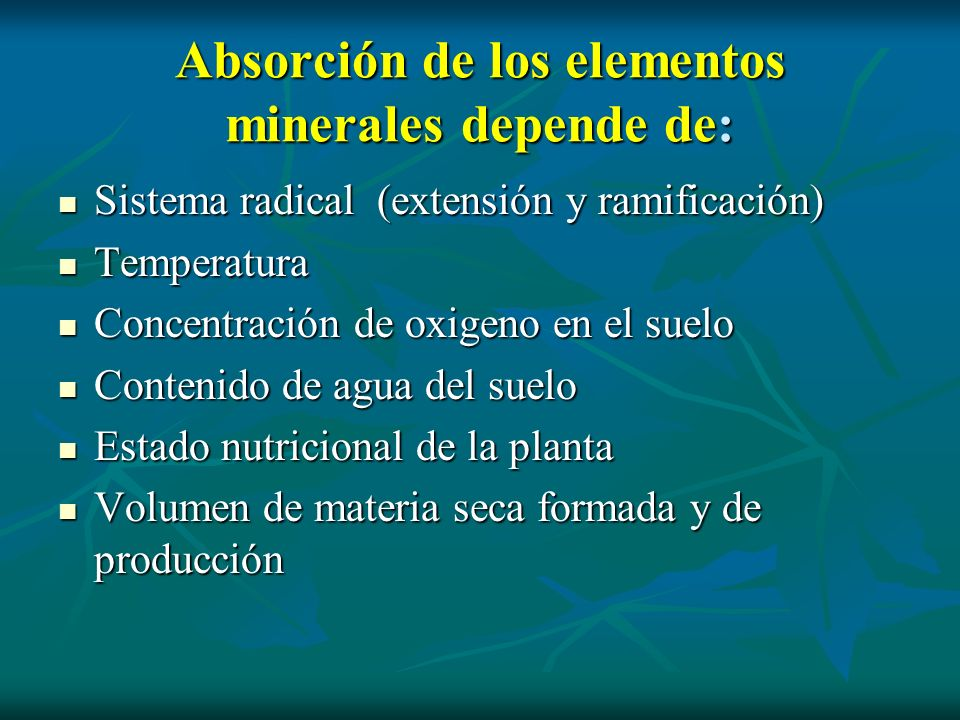 Absorción de los elementos minerales depende de: Sistema radical (extensión y ramificación) Sistema radical (extensión y ramificación) Temperatura Tem