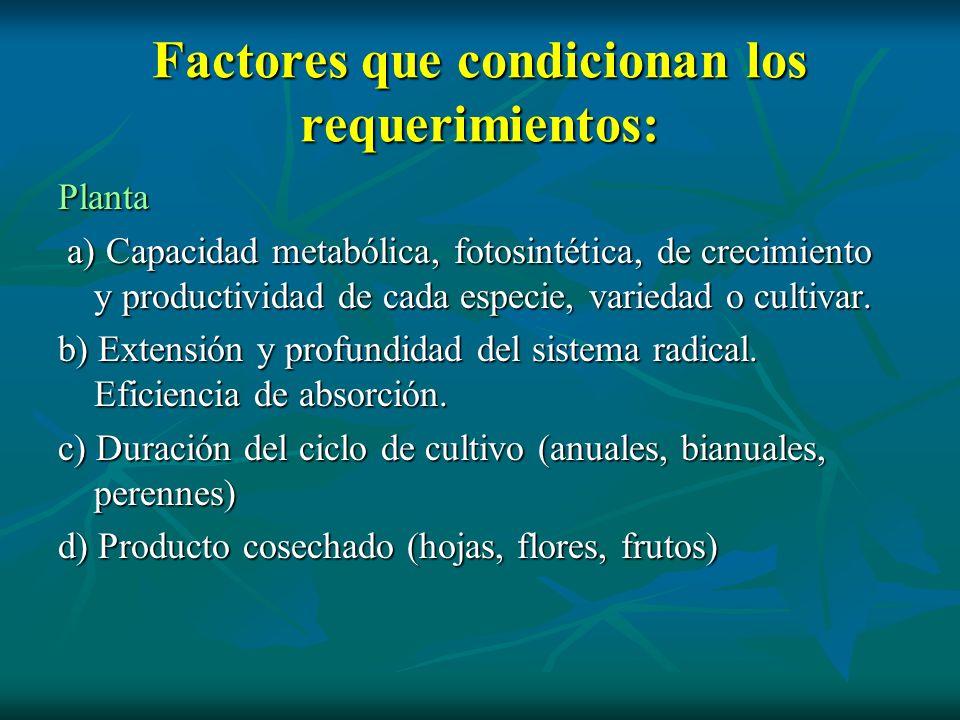 Factores que condicionan los requerimientos: Planta a) Capacidad metabólica, fotosintética, de crecimiento y productividad de cada especie, variedad o