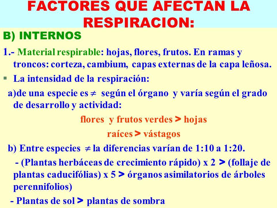 LUIS ROSSI FACTORES QUE AFECTAN LA RESPIRACION: B) INTERNOS 1.- Material respirable: hojas, flores, frutos. En ramas y troncos: corteza, cambium, capa