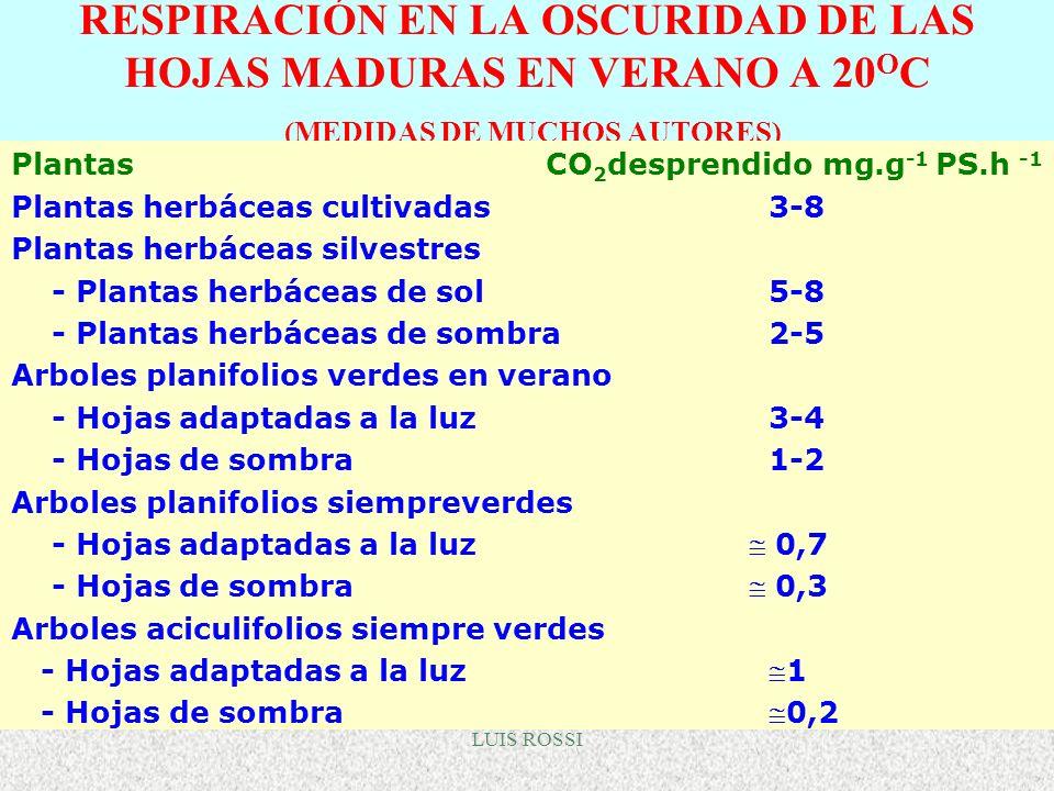 LUIS ROSSI RESPIRACIÓN EN LA OSCURIDAD DE LAS HOJAS MADURAS EN VERANO A 20 O C (MEDIDAS DE MUCHOS AUTORES) Plantas CO 2 desprendido mg.g -1 PS.h -1 Pl