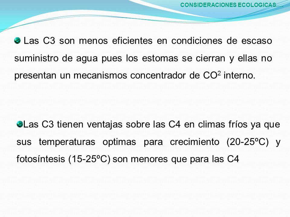 Las C3 son menos eficientes en condiciones de escaso suministro de agua pues los estomas se cierran y ellas no presentan un mecanismos concentrador de CO 2 interno.